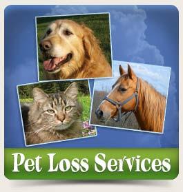 contact_pet-loss