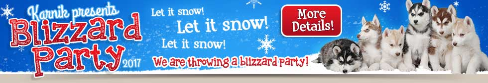 2017 Blizzard Party